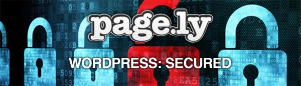 wordpress-secured-large