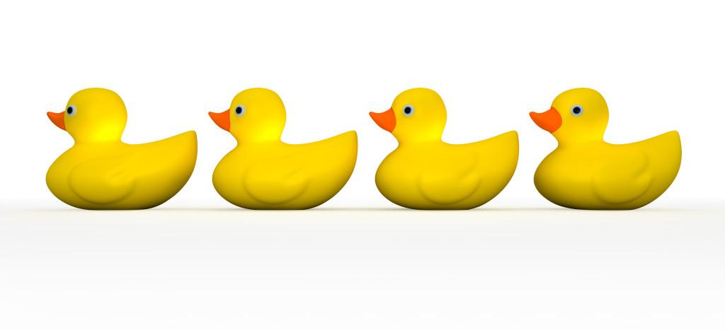 ducks_115185067