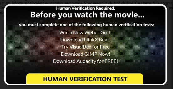 Human Verification Test