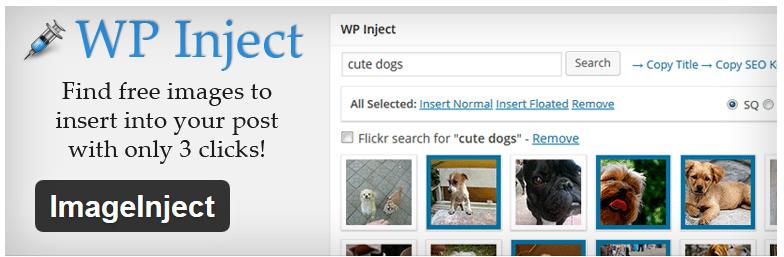Wp-inject